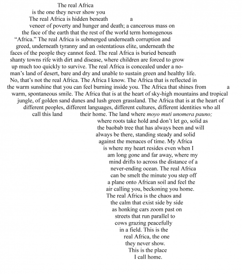 The Real Africa
